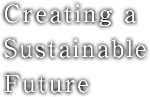 Creating a Sustainable Future